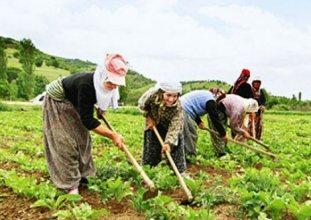 çiftçinin borcu büyüyor